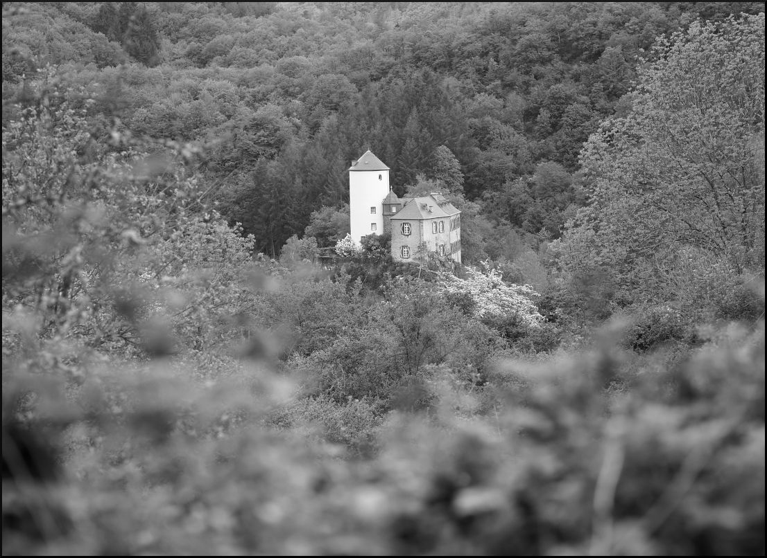 Blick auf die Burg Kreuzberg im Ahrtal