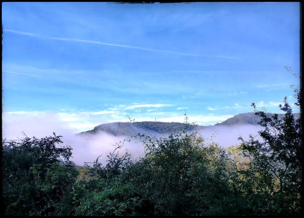 ![Nebel im Ahrtal][1]